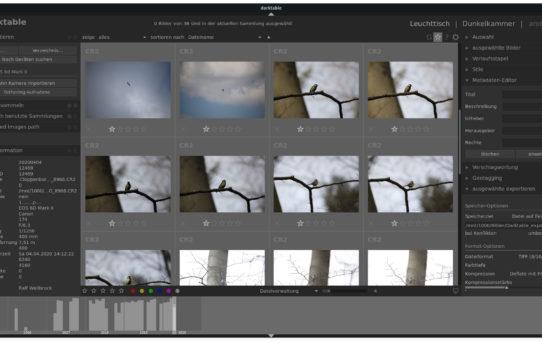 darktable: Verzeichnisstruktur der Fotos - Mein Weg